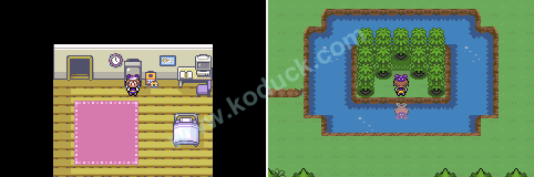 Pokemon 5.0EX BW_1425444588821