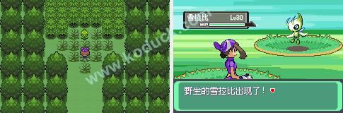 Pokemon 5.0EX BW_1425445124231